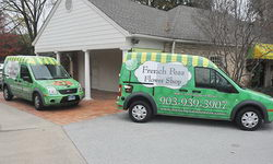 Company fleet wraps for transit vans in Lindale